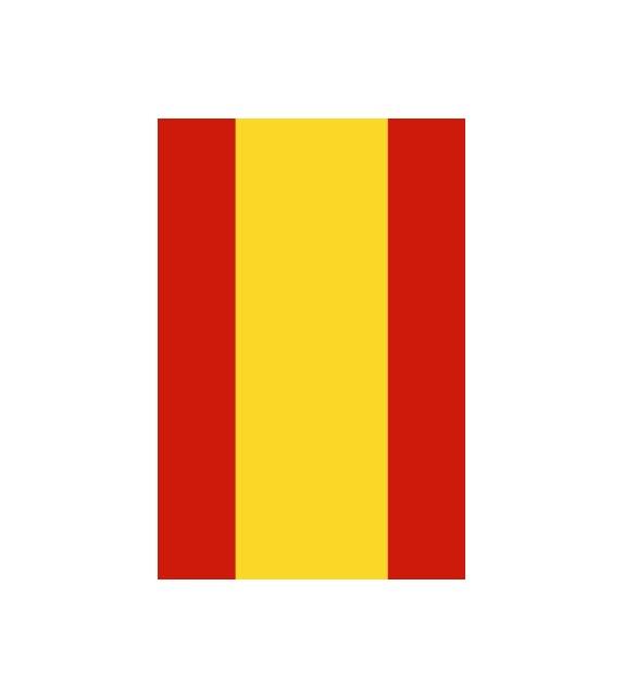 Bandera España 15x22